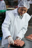 Female butcher packing raw sausages. At meat factory Royalty Free Stock Photography