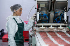Female butcher processing hamburger patty Stock Photography