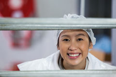 Female butcher standing in meat factory Royalty Free Stock Image