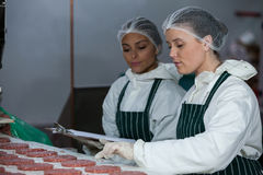 Female butchers maintaining records on clipboard Royalty Free Stock Photography