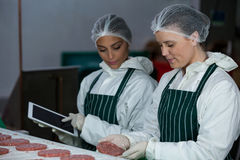 Female butchers maintaining records over digital tablet Stock Images