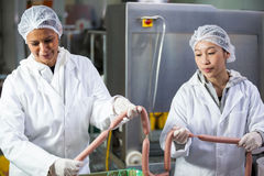 Female butchers processing sausages Royalty Free Stock Image