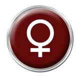 Female Button Royalty Free Stock Image