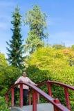 Female Cancer Survivor Enjoying Beautiful Day Outdoors Stock Image