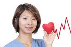 Female Cardiologist. An Asian female cardiologist holding a red heart stock photos
