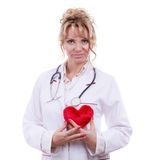 Female cardiologist with red heart. Periodic examinations. Cardiology concept. Female cardiologist holding red heart. Middle aged doctor with stethoscope and royalty free stock photos