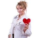 Female cardiologist with red heart. Stock Photography