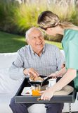 Female Caretaker Serving Breakfast To Senior Man Stock Photography