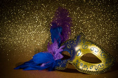 Female carnival mask Royalty Free Stock Images