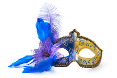 Female carnival mask Stock Photos