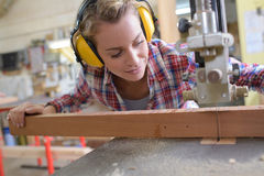 Female carpenter cutting wood with electrical jigsaw Royalty Free Stock Image