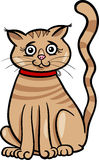 Female cat cartoon illustration Royalty Free Stock Photo