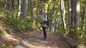 Backpacker looks at map in wood stock footage
