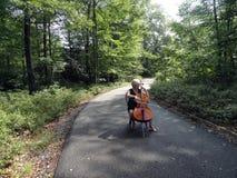 Female cellist. Stock Photography