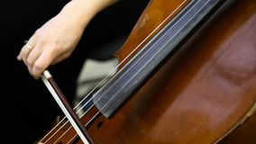 Female cello player playing violoncello. Close up of woman hand playing cello. stock video footage