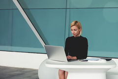 Female CEO concentrated read resume of specialists on net-book for recruitment for new vacancies Royalty Free Stock Photo