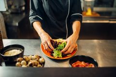 Female chef cooking meat salad on wooden table royalty free stock photography