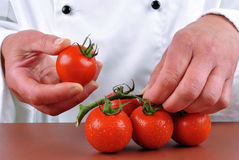 Female chef holding a couple of fresh tomatoes royalty free stock photos