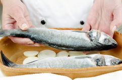 Female chef lays two sea bass in a cassarolle Stock Images