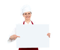 Female chef pointing towards blank whiteboard Royalty Free Stock Photography