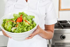 Female Chef Presenting Salad. Midsection of female chef presenting healthy salad in commercial kitchen Royalty Free Stock Images