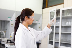 Female chemist looking at an Erlenmeyer flask Royalty Free Stock Photos