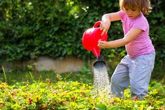 Female child in the garden. stock image