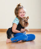 Female child playing with Yorkie Stock Photo