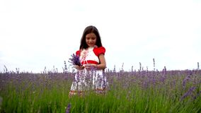 Female Child Standing in a Field of Lavender stock footage