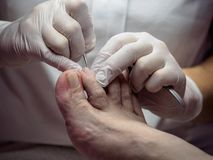 Female chiropodist working on a senior clients feet. Female chiropodist at work on a senior clients feet stock image