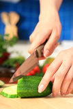 Female chopping food ingredients. Stock Photos