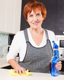 Female cleaning kitchen Stock Images