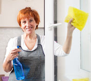 Female cleaning window Royalty Free Stock Photo