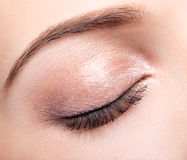 Female closed eye and brows with day makeup Stock Photography