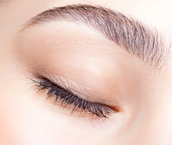 Female closed eye and brows with day makeup Royalty Free Stock Photos