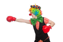Female clown with box gloves  isolated on white Stock Image