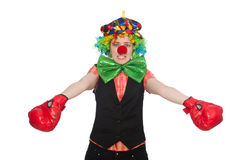 Female clown with box gloves  isolated on white Stock Photo