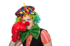 Female clown with box gloves  isolated on white Royalty Free Stock Images