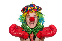 Female clown with box gloves Royalty Free Stock Images