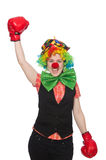 Female clown with box gloves  isolated on white Royalty Free Stock Photo