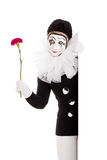 Female clown with flower in hand. Pretty female clown with flower in hand Royalty Free Stock Photography