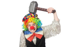 Female clown. The female clown isolated on white Royalty Free Stock Photo