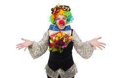 Female clown. The female clown isolated on white Stock Images