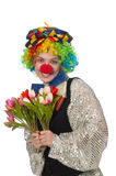 Female clown. The female clown isolated on white Royalty Free Stock Photos