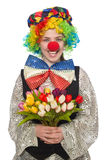 Female clown isolated on white Stock Photography