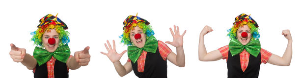 The female clown. Female clown isolated on white Stock Photos