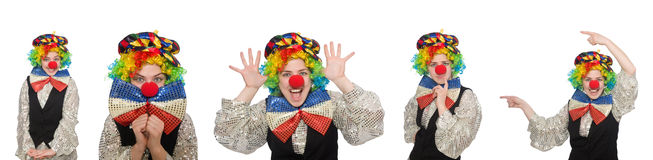 The female clown. Female clown isolated on white Royalty Free Stock Photo