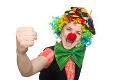 Female clown on white. The female clown isolated on white Stock Images