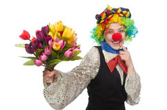 Female clown on white. The female clown isolated on white Royalty Free Stock Image