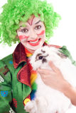 Female clown with a white rabbit Stock Images